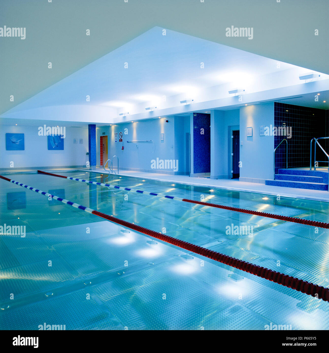 Refurbishment of a gym club, including the swimming pool ...