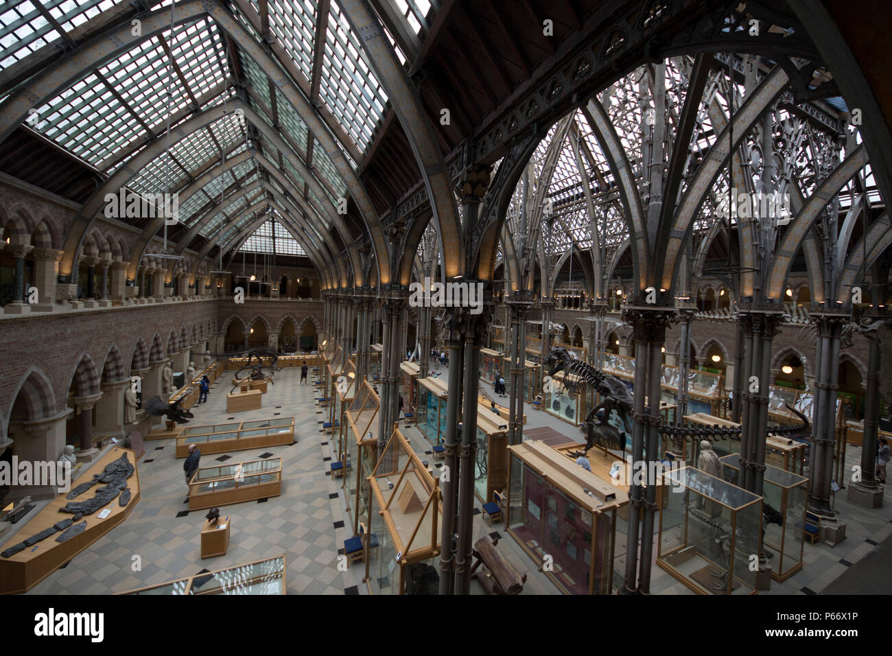 University of Oxford Museum of Natural History - Stock Image