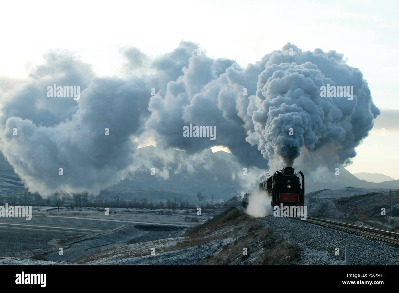 0085 Stock Photos & 0085 Stock Images - Page 3 - Alamy