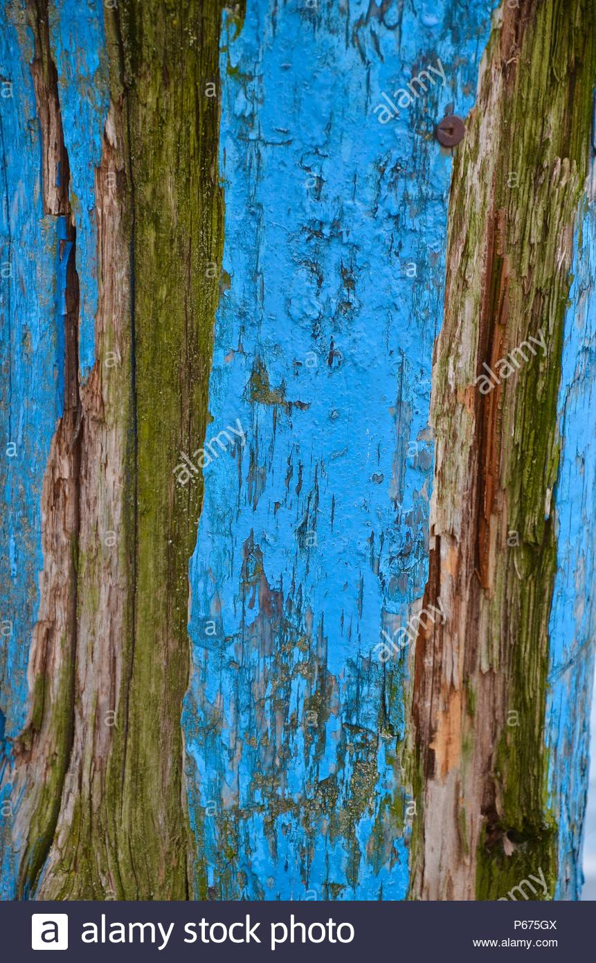Turquoise colored wooden pole in a lake, texture, structure, water, background, frame, brown, woods, forest, boats, water, scenery, design - Stock Image
