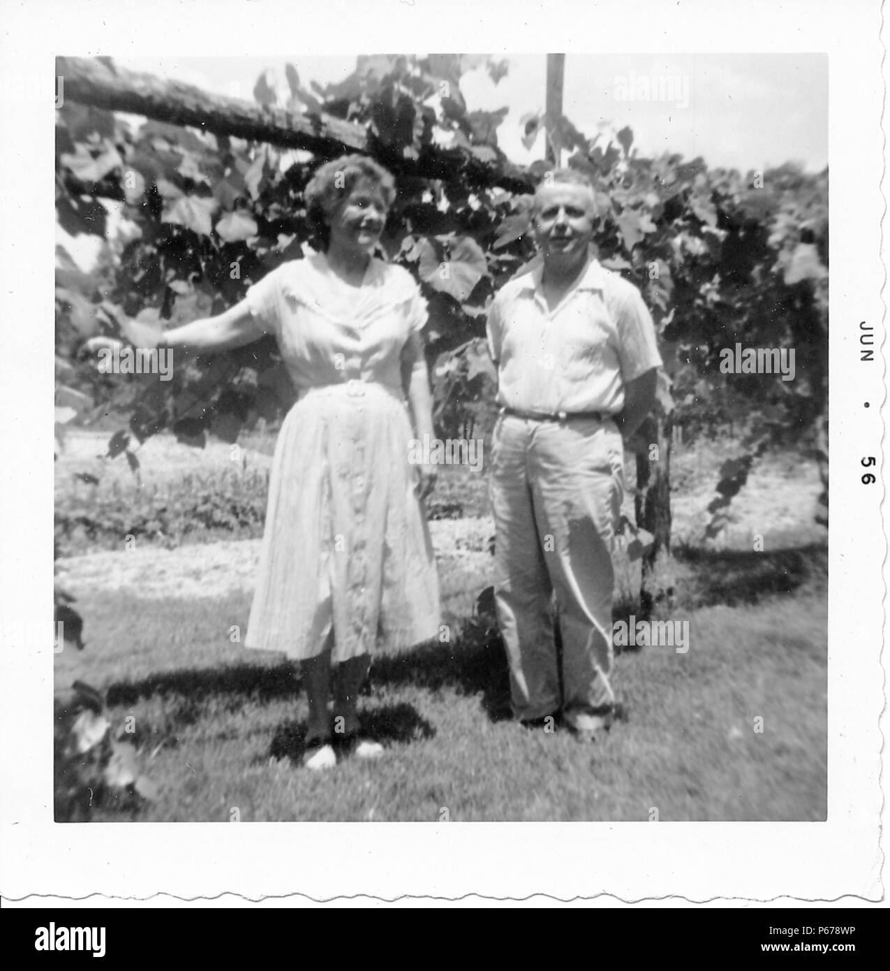 Black and white photograph, showing an older couple, in full length, posing together outdoors, the man, faces the camera, and wears a light colored shirt and trousers, the short-haired woman, wears a light colored, tea-length dress and smiles at something off-camera, her arm rests on a vine-covered fence behind her, likely photographed in Ohio, June, 1956. () Stock Photo