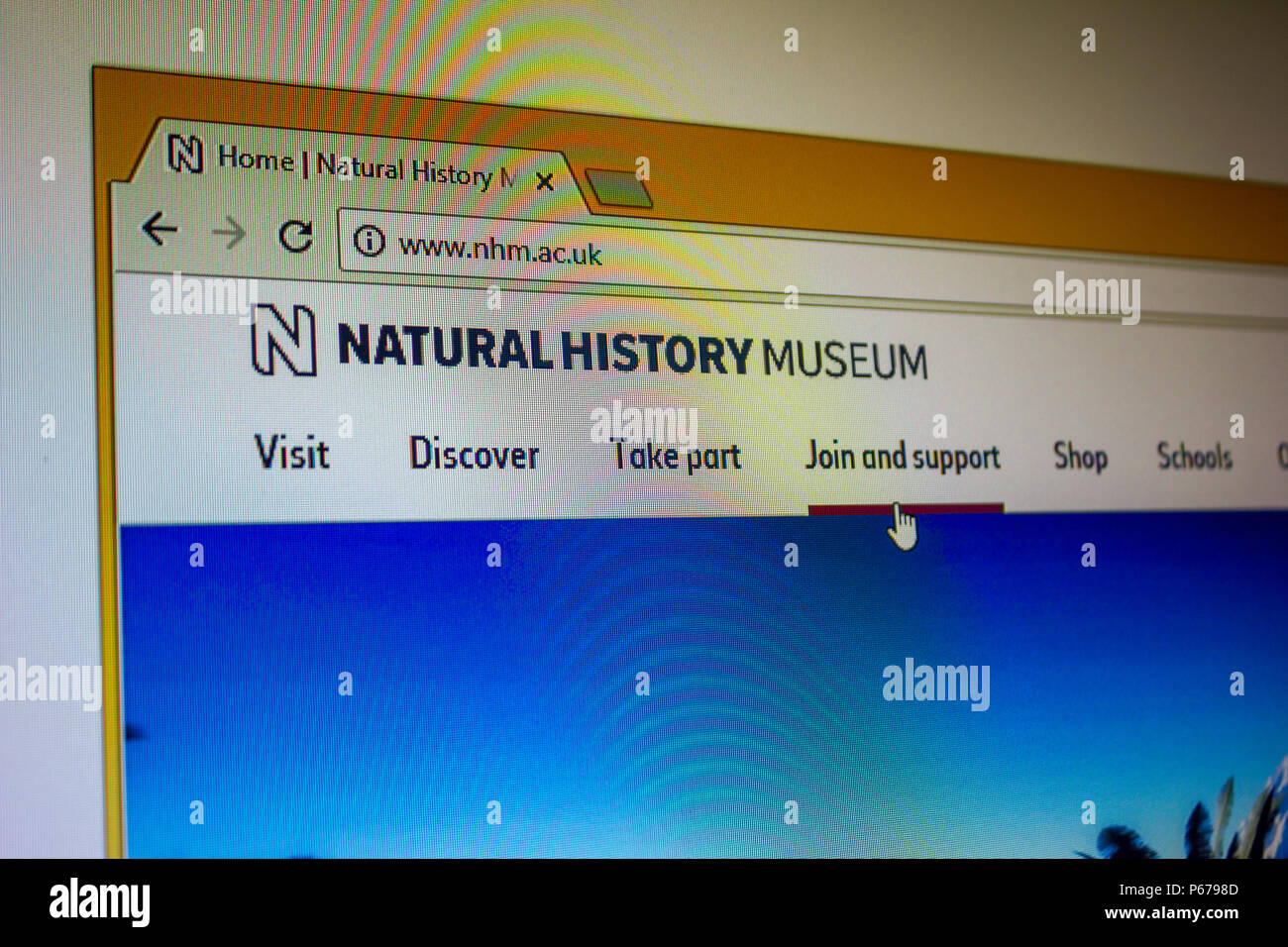Website - Natural History Museum, London - Stock Image