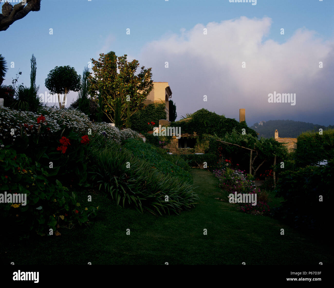 View of esthetic landscaping in the evening - Stock Image