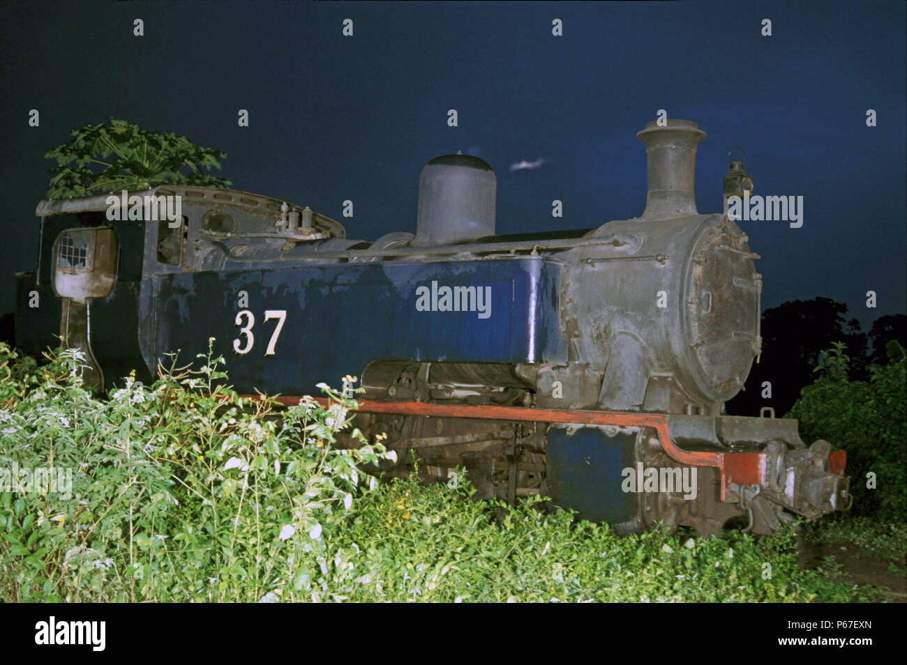 Awaso Loco Shed Ghana on Thursday 13th June 1985 with Hunslet 0-6-0T No.37 standing out of use in the overgrown depot yard. - Stock Image