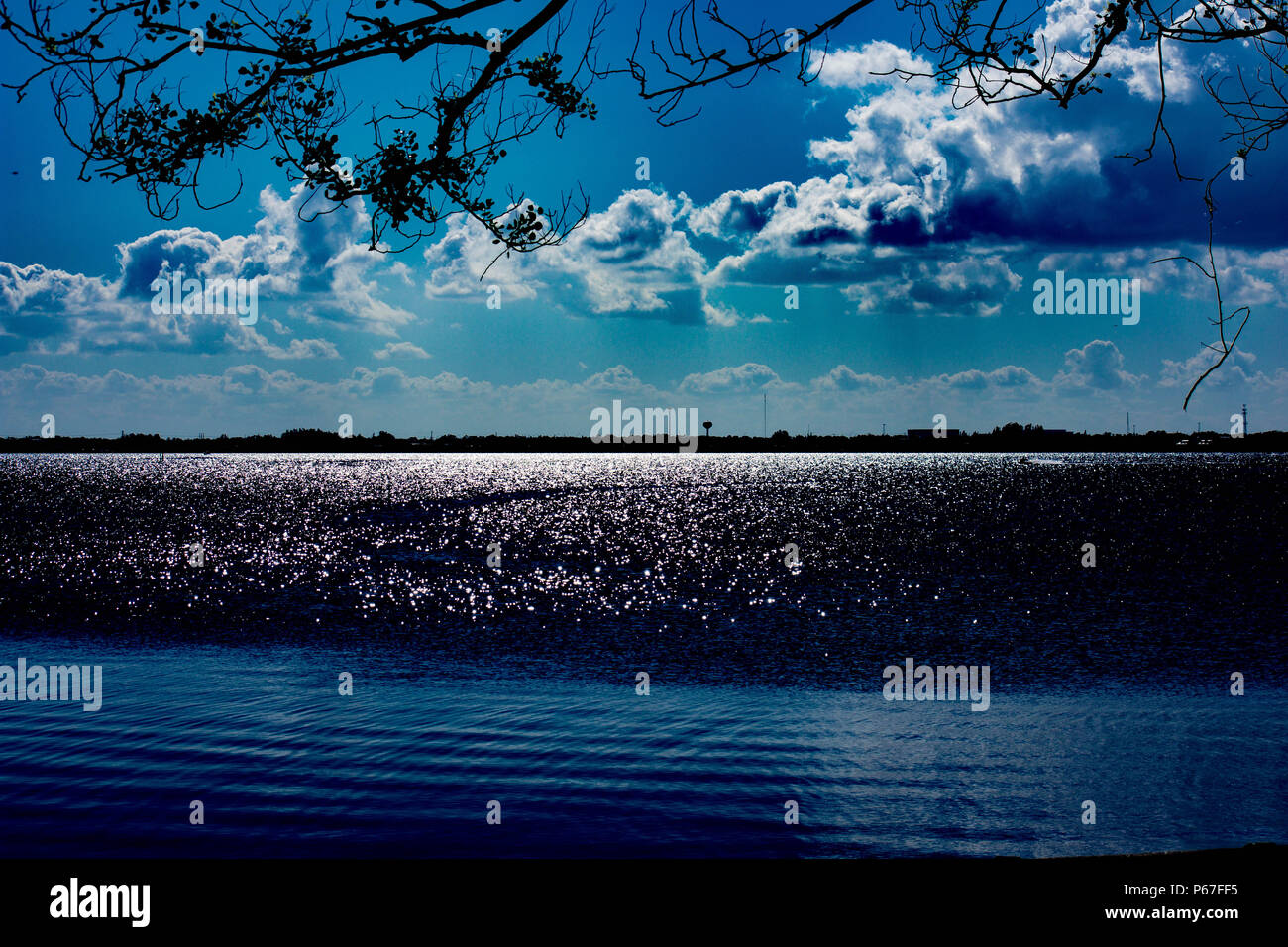 Banana river sparkling mid day in florida - Stock Image