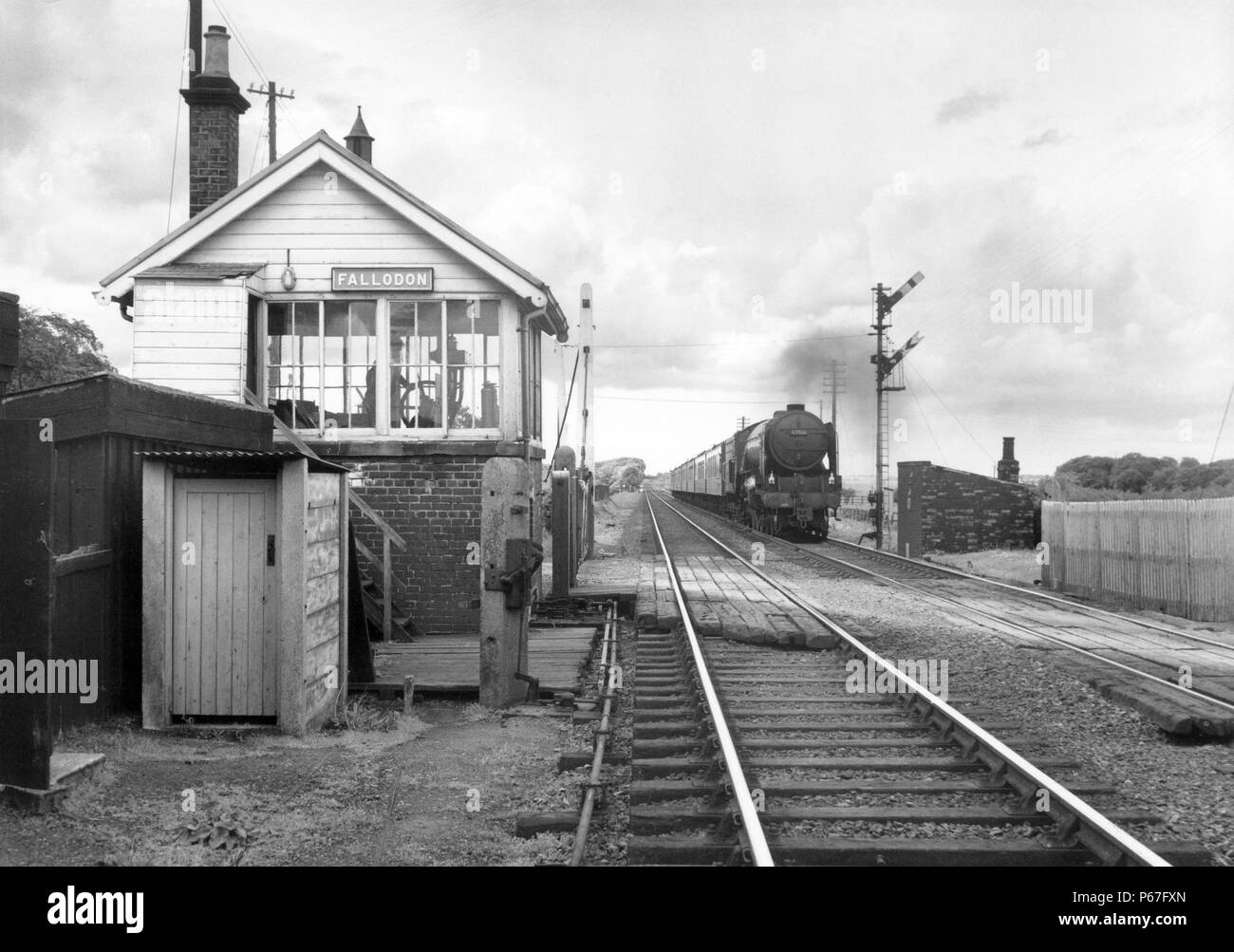 Former L.N.E.R. A2 Pacific No.60516 Hycilla caught at Fallodon on the East Coast Main Line with a train of Pullman stock. 7th June 1960. - Stock Image