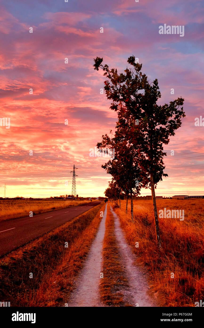 Sunrise on the pedestrian path on the Carretera Hacia Reliegos, El Burgo Ranero, Spain - Stock Image