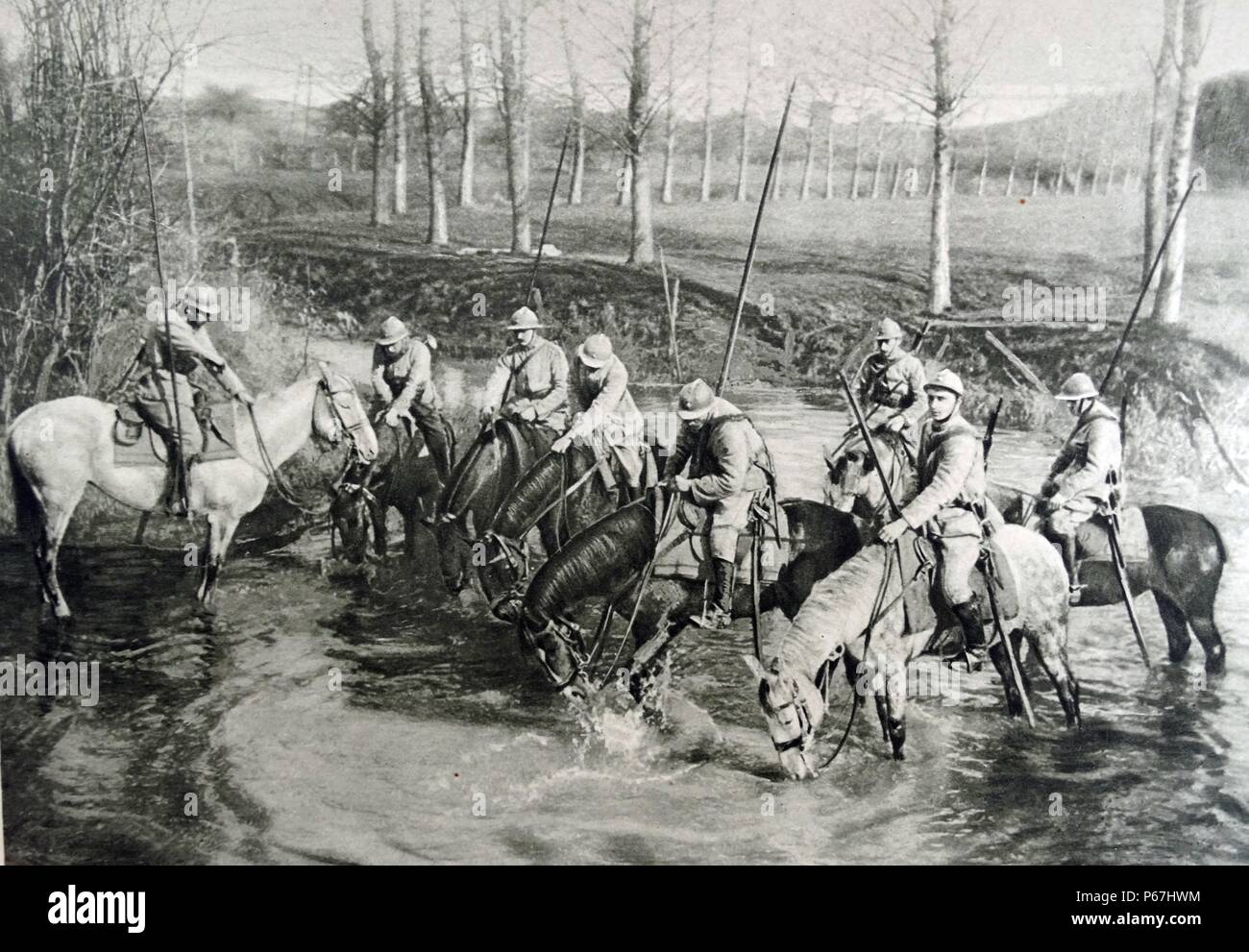 French cavalry horses drink at a river;   France;   World war one 1915 - Stock Image