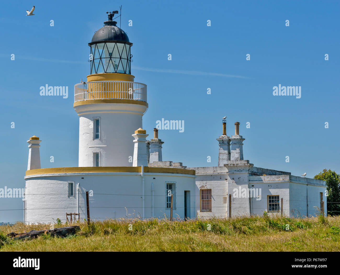 BLACK ISLE ROSS AND CROMARTY SCOTLAND CHANONRY POINT AND THE LIGHTHOUSE - Stock Image