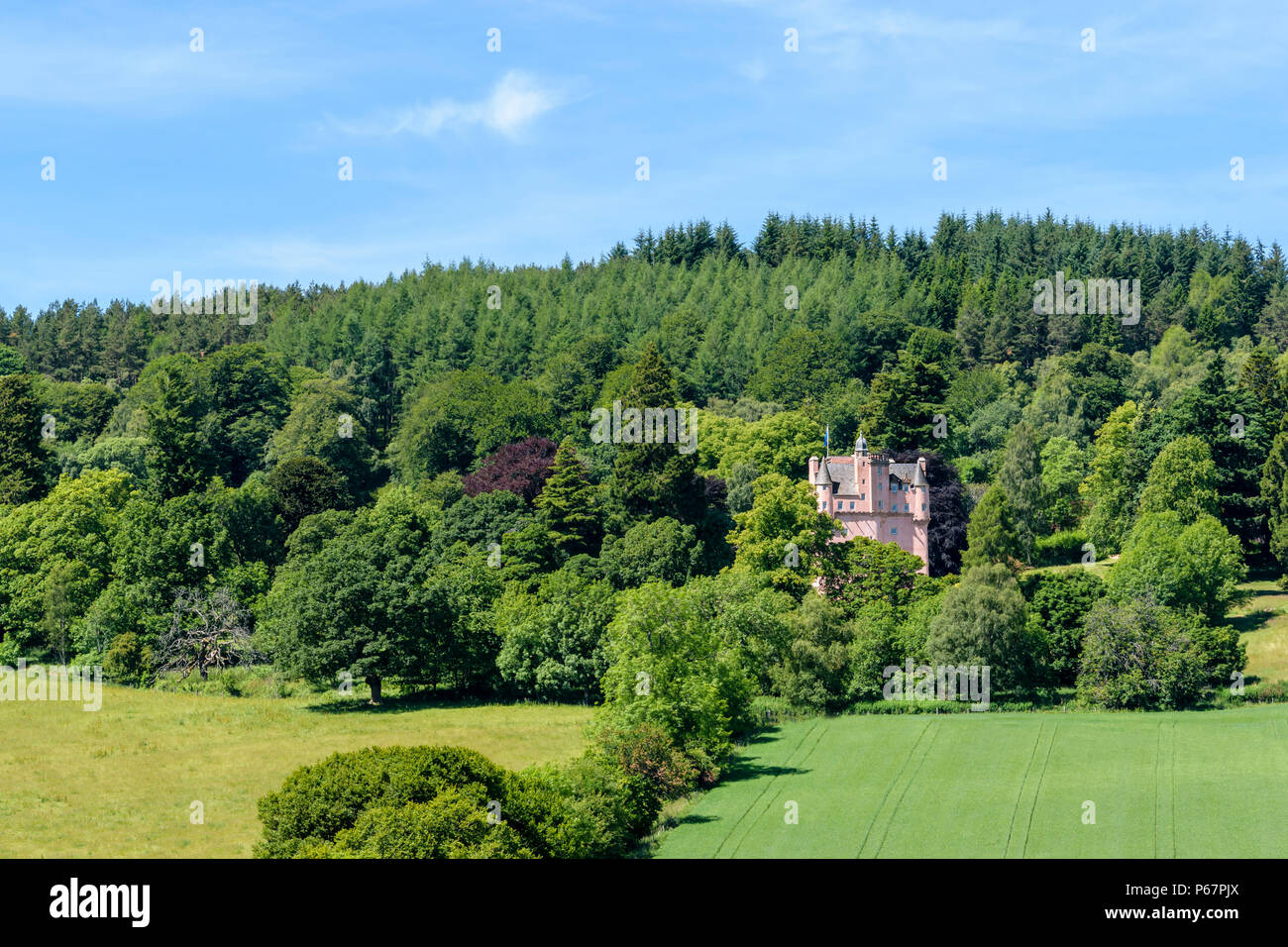 CRAIGIEVAR CASTLE ABERDEENSHIRE SCOTLAND PINK TOWER SURROUNDED BY FIELDS TREES AND LEAVES IN SUMMER - Stock Image