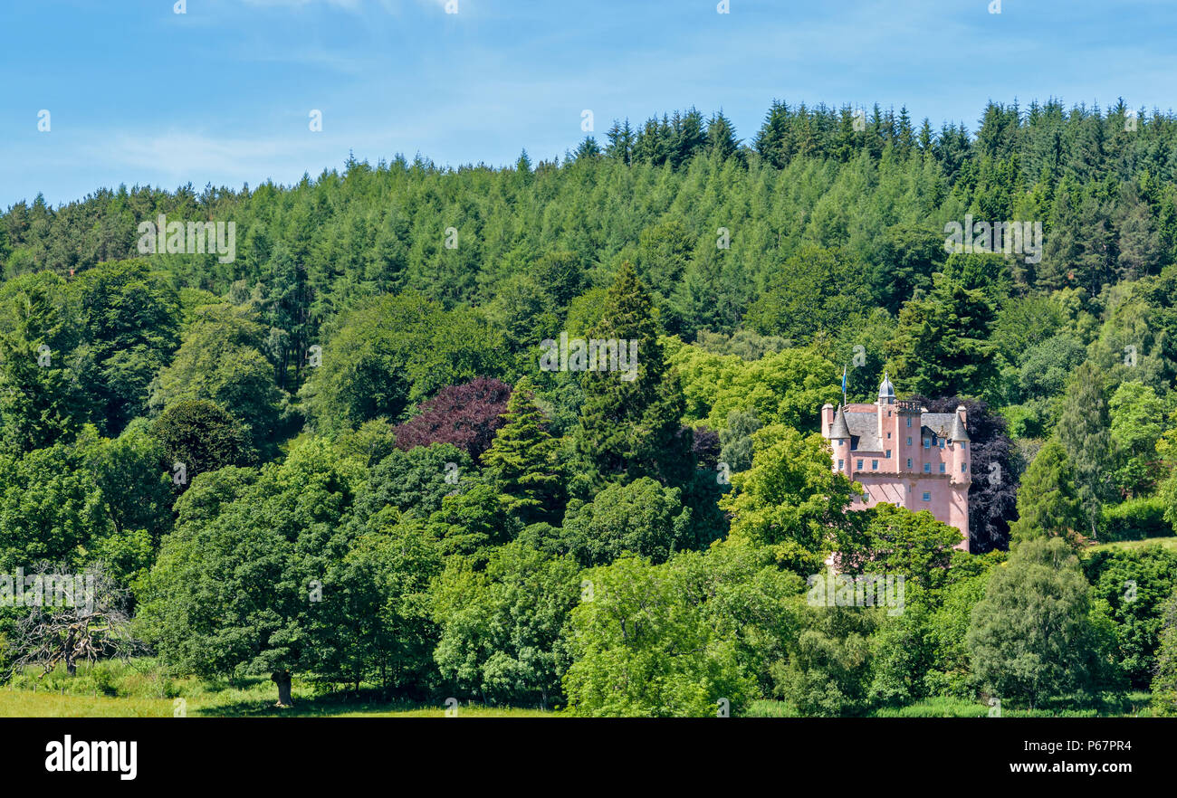 CRAIGIEVAR CASTLE ABERDEENSHIRE SCOTLAND PINK TOWER SURROUNDED BY VARIETY OF TREES AND LEAVES IN SUMMER - Stock Image