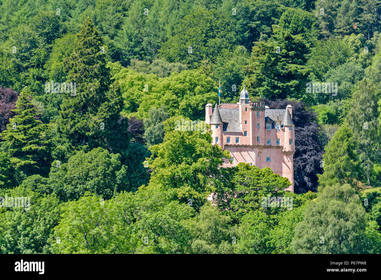 CRAIGIEVAR CASTLE ABERDEENSHIRE SCOTLAND PINK TOWER SURROUNDED BY A VARIETY OF TREES AND LEAVES IN SUMMER - Stock Image