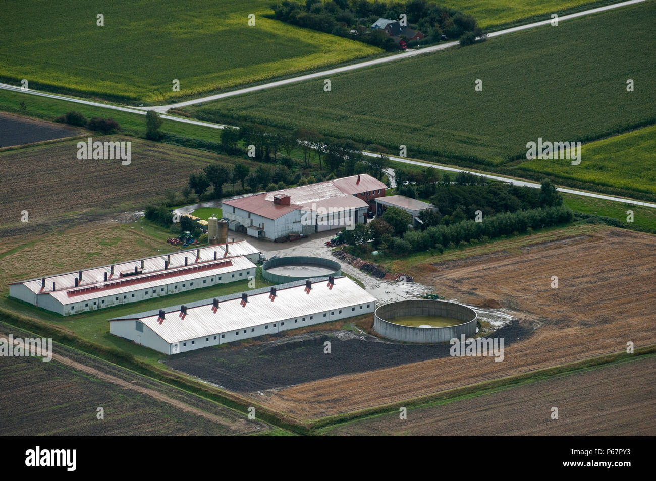 GERMANY aerial view of farm homestead with slurry tank and stable with solar roof in Northern Germany - Stock Image