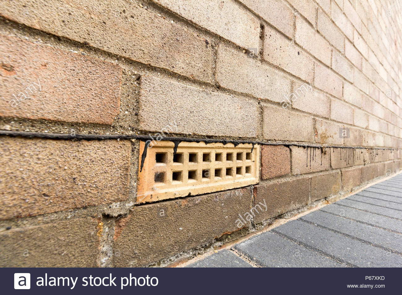 Air brick and damp proof course situated in a brick wall of a house - Stock Image