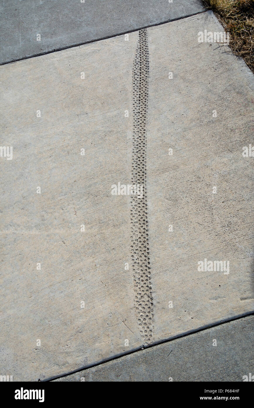 Bicycle tire tracks in concrete cement sidewalk. Purposely ridden over when cement was wet. Castle Rock, Colorado US. - Stock Image