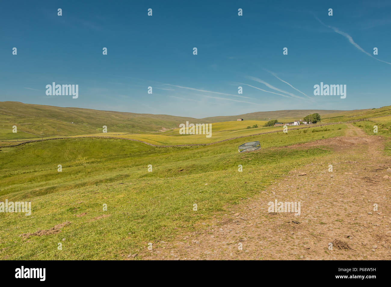 North Pennines AONB Landscape, Lingy Hill farm, Harwood, Teesdale - Stock Image