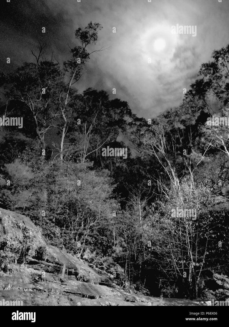 Katoomba Cascade at full moon, Blue Mountains, NSW, Australia.  Ghostly vision of the moon shrouded in thin cloud over a forest scene.  Black and white version. - Stock Image