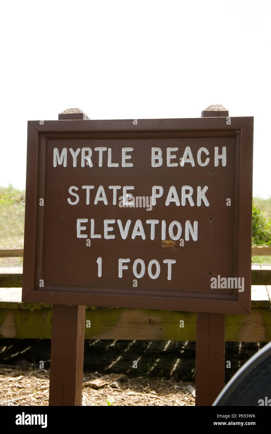 One Foot Elevation Sign at Myrtle Beach State Park, SC, USA. - Stock Image