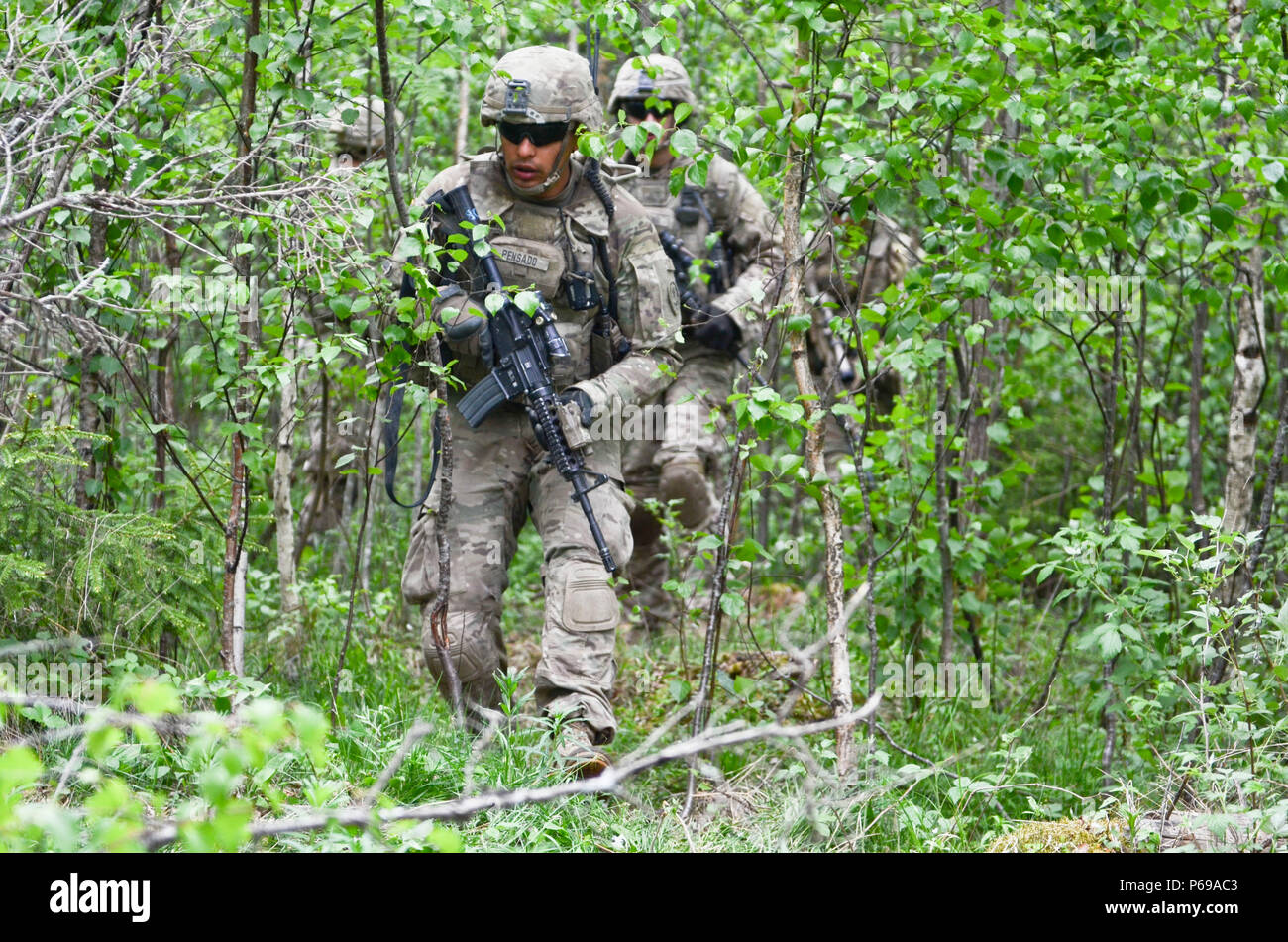 Eagle Troop Soldiers from 2nd Squadron, 2nd Cavalry Regiment, maneuver through the woods during a squad training exercise (STX) at Tapa Training Area, Estonia, May 26, 2016. (U.S. Army photo by Staff Sgt. Steven M. Colvin) - Stock Image