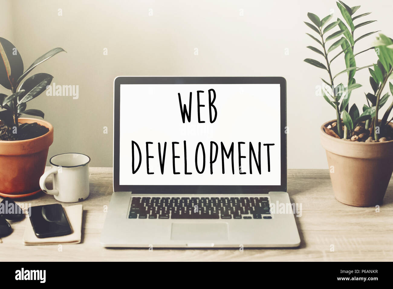 web development text on laptop screen on wooden desktop with