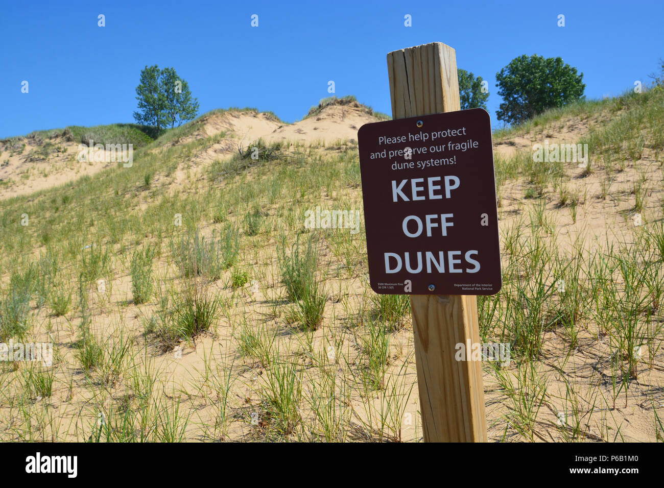 The Mount Baldy dune at Indiana Dunes National Park is closed to visitors due to sinkholes and to conserve the dune grasses. - Stock Image