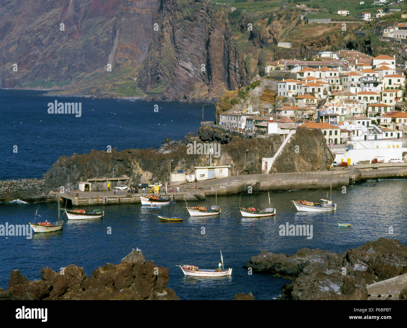 Portugal, Madeira, Camara de Lobos, fishing village, - Stock Image