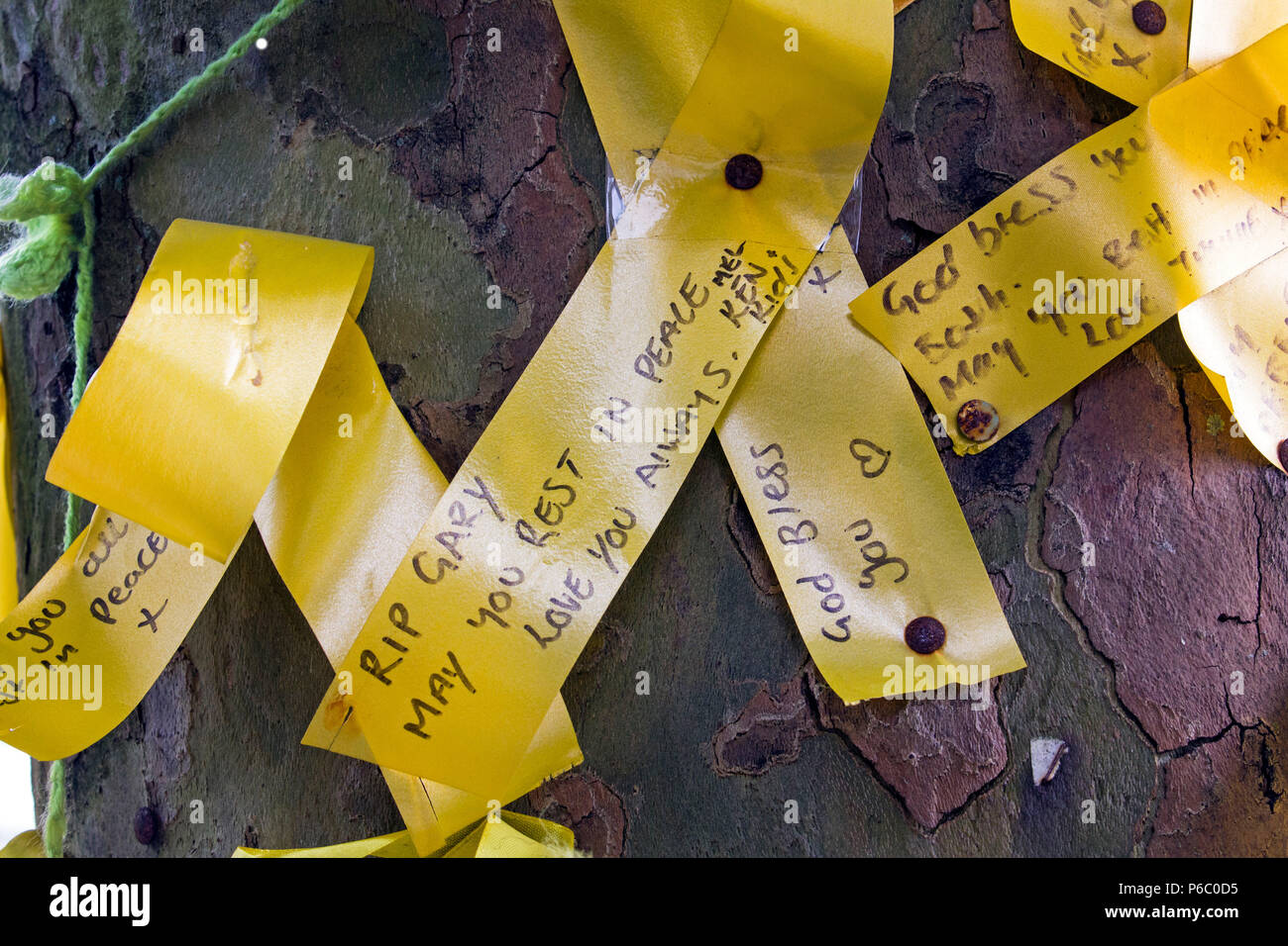 The first anniversary of the Grenfell Tower fire which claimed 72 lives. Yellow ribbons pinned to trees. South Kensington, London, UK, 14th June 2018. - Stock Image