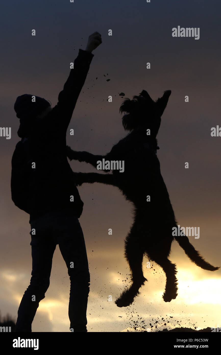 Wustrow, Germany - Silhouette, boy playing ball with his dog on a dune in the evening - Stock Image
