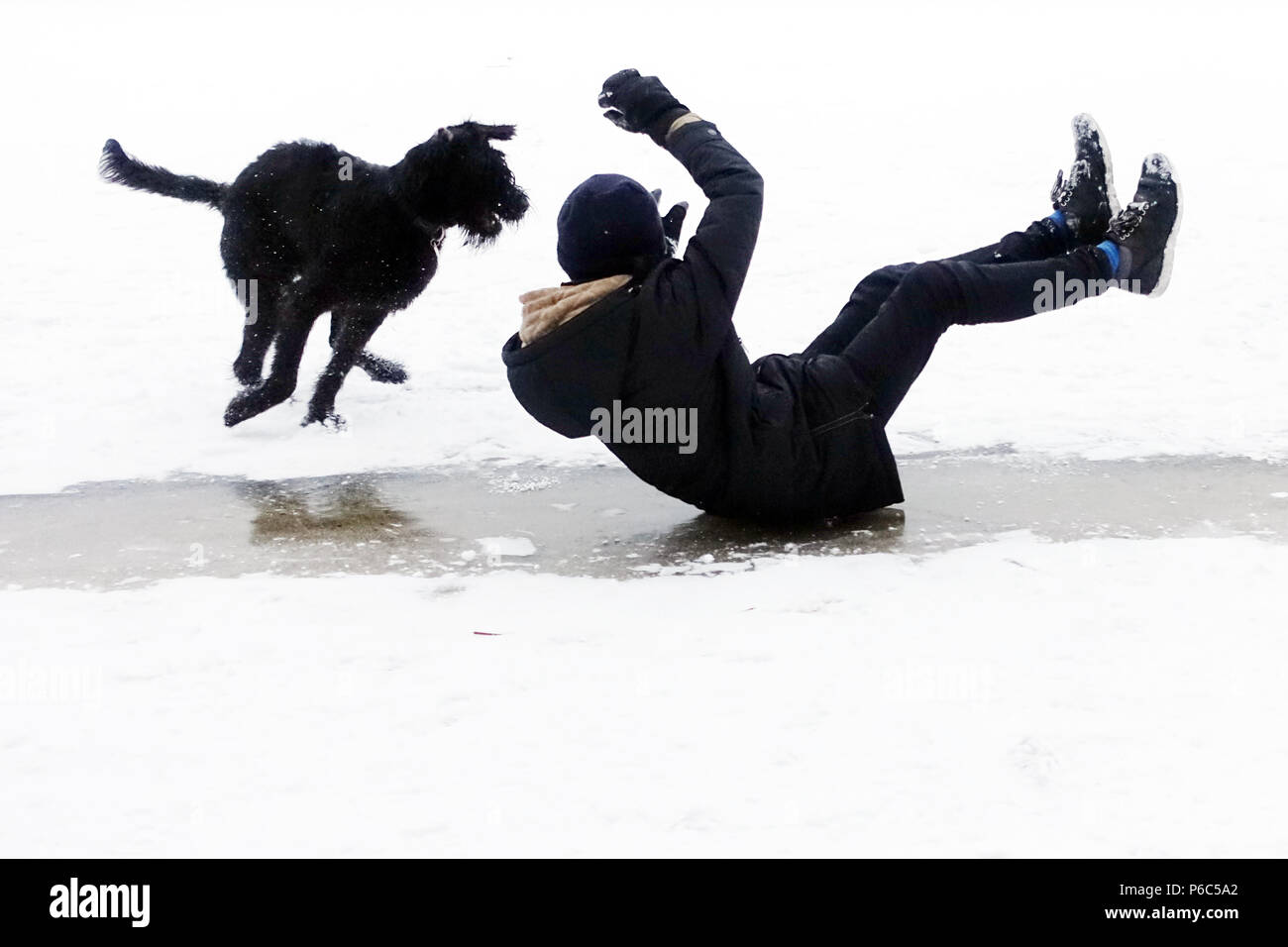 Berlin, Germany, boy slips over an ice surface accompanied by his dog on the pants - Stock Image