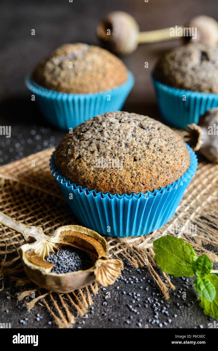 Homemade healthy muffins with poppy seeds - Stock Image