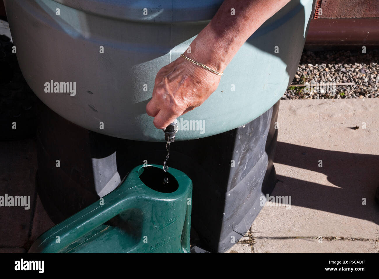 Elderly woman turning tap on waterbutt to fill watering can to water plants during drought - Stock Image