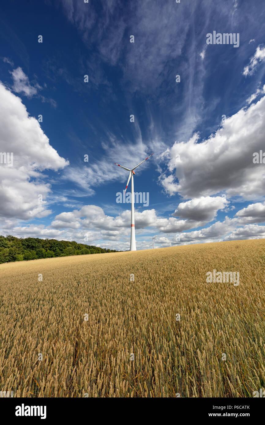 Wind turbine in a wheat field near Helmstadt, Germany - Stock Image