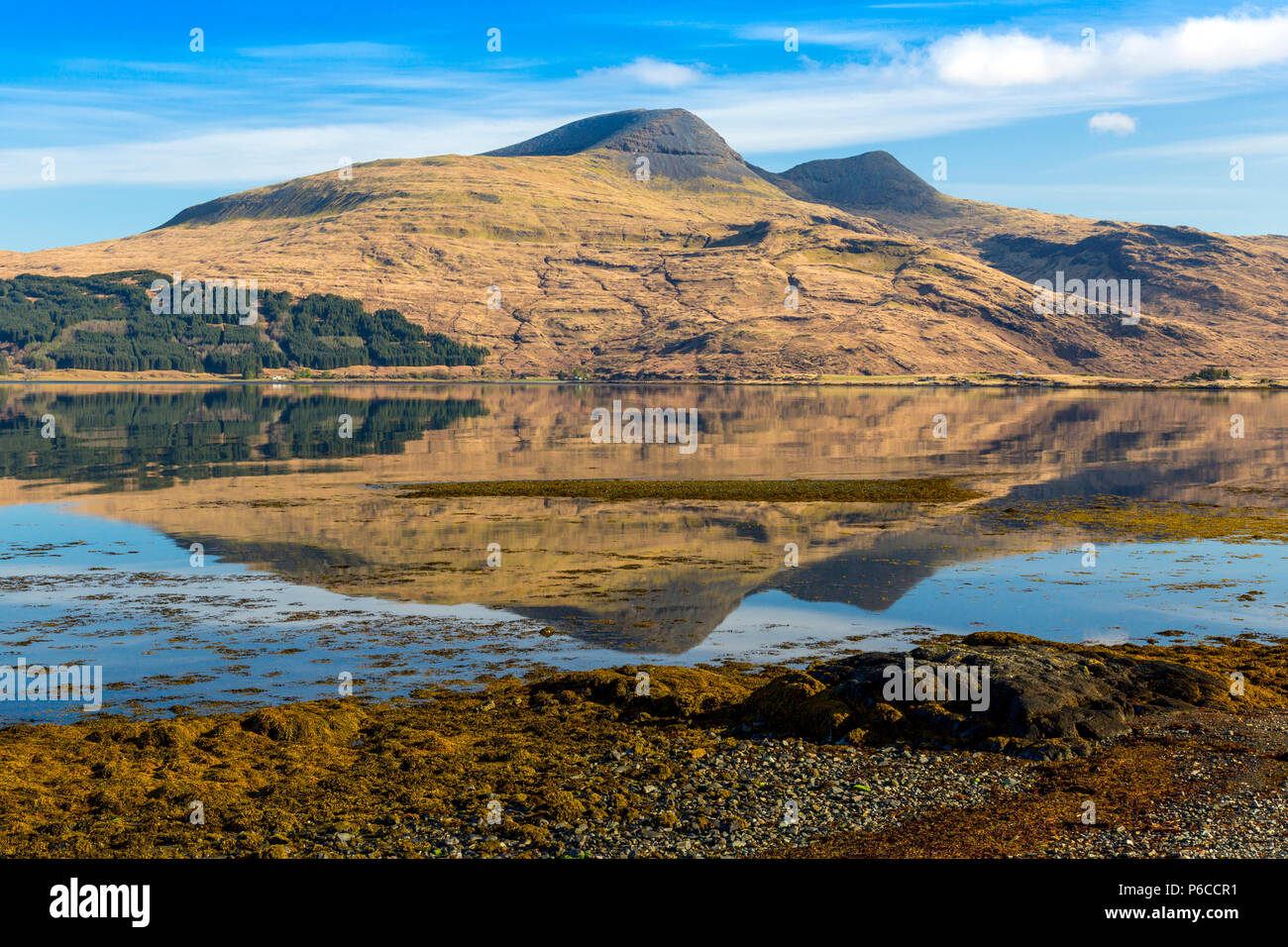 Early morning reflections of Ben More in the still waters of Loch Scridain on the Isle of Mull, Argyll and Bute, Scotland, UK - Stock Image