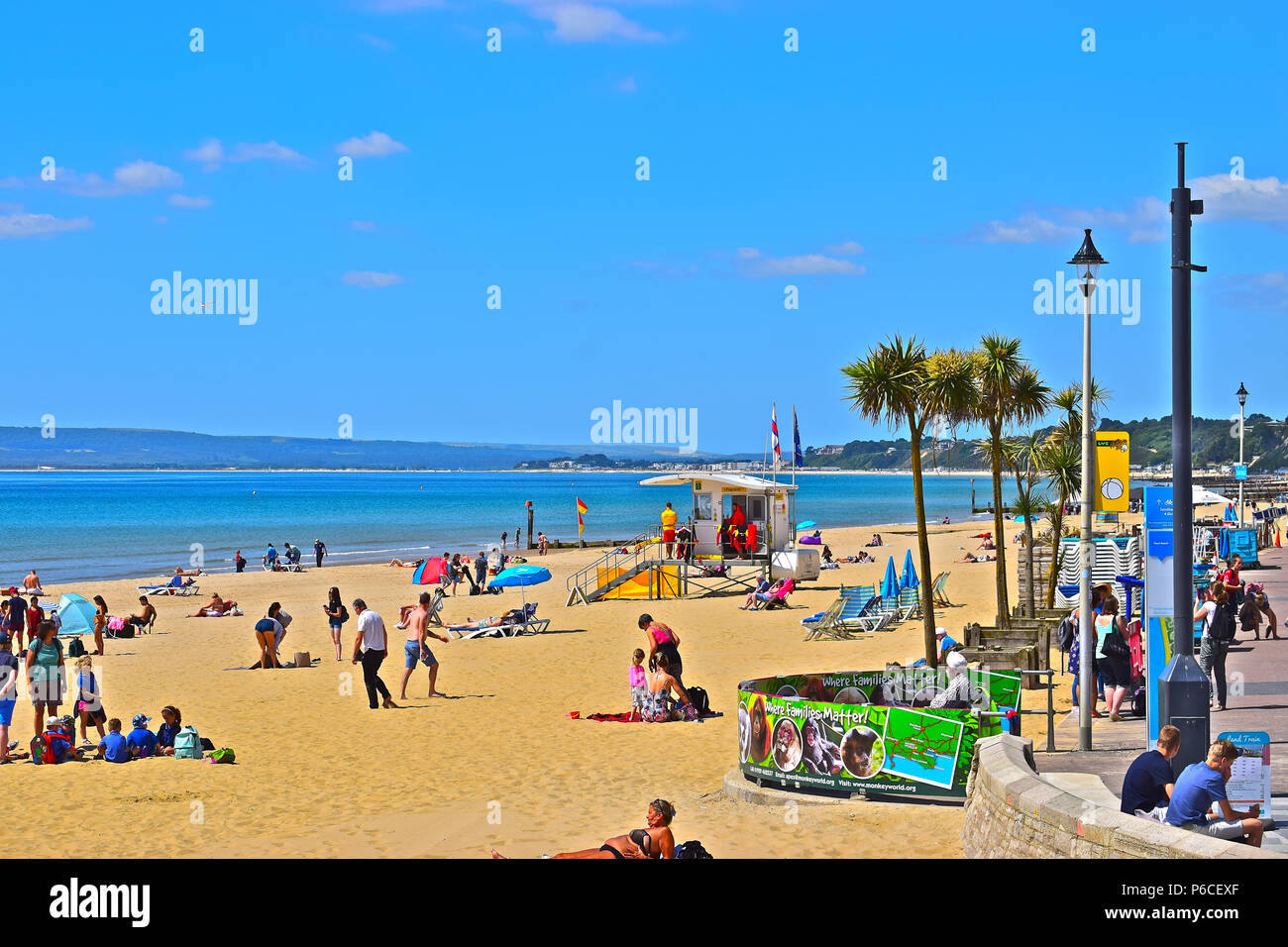 Hot sunny weather & the palm trees give this beach scene a tropical feel as people enjoy the beach next to  Bournemouth Pier in the Summer time - Stock Image