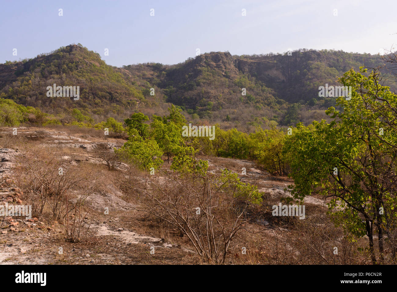 Cliffs in the Indian Wilderness of Bandhavgarh National Park in India - Stock Image
