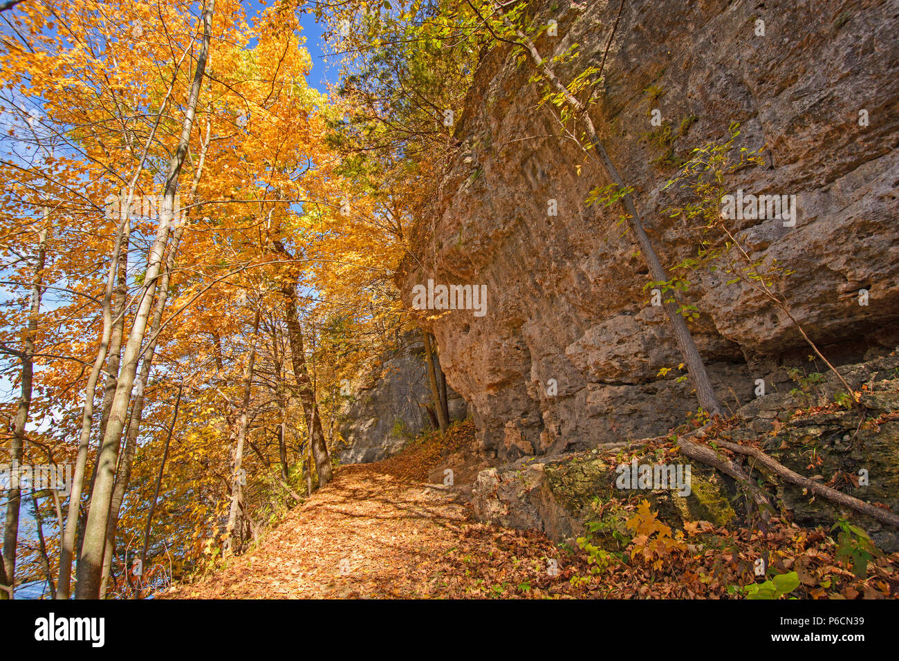 Hiking a Cliff Trail in the Fall in Backbone State Park in Iowa - Stock Image