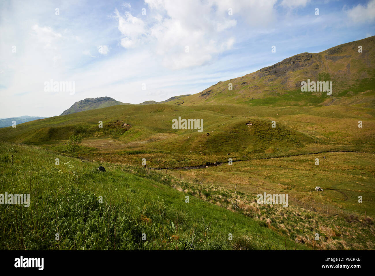 steel fell fields and hills dunmail raise in the lake district cumbria england uk - Stock Image