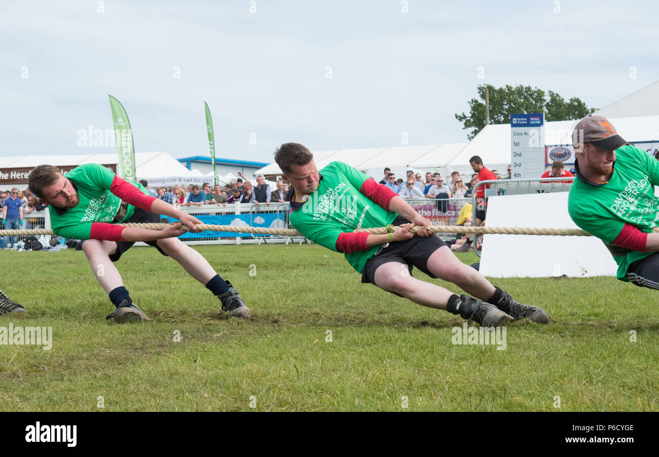 Tug of War team competing at the Royal Highland Show young farmers competition 2018, Edinburgh, Scotland, UK - Stock Image
