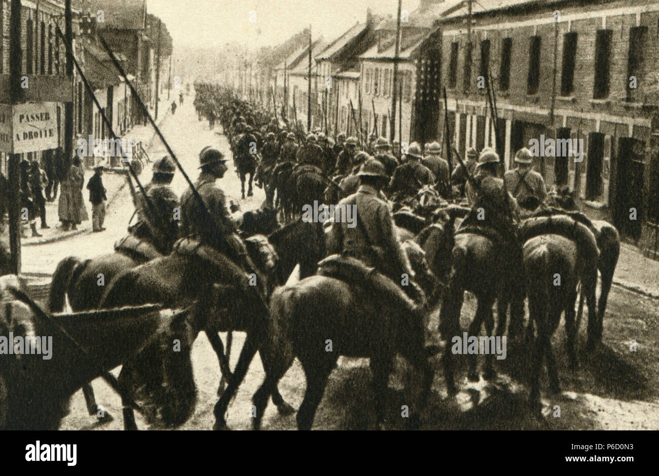 cavalry, military horse, ww1, wwi, world war one - Stock Image