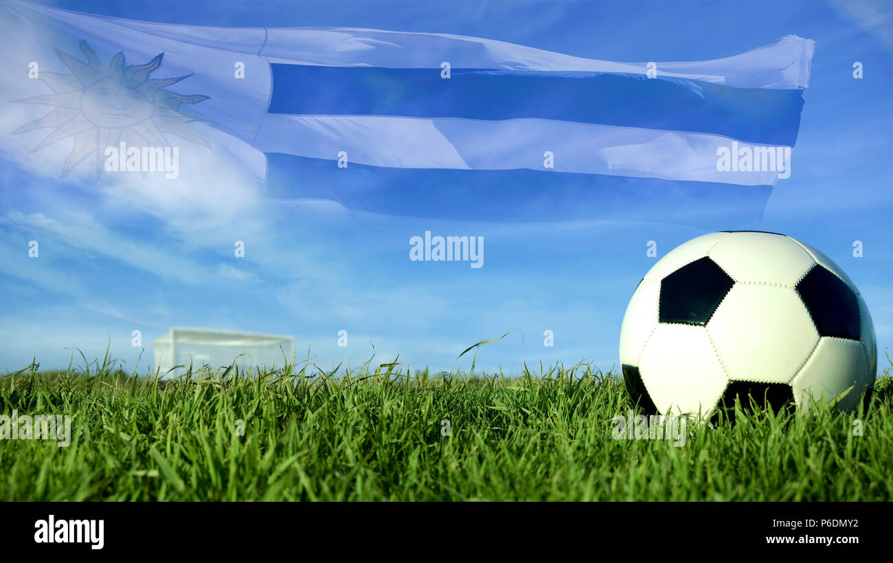 Soccer Football On Green Field With Blue Sky Background: Generic Soccer Ball Stock Photos & Generic Soccer Ball