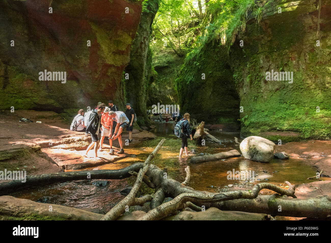 Sterlingshire, UK, 30 June 2018. Devil's Pulpit, Finnich Glen, Stirlingshire, Scotland, UK - 30 June 2018: uk weather - brilliant sunshine illuminating Finnich Glen in Stirlingshire.  There has been a marked increase in visitors to the beauty spot just outside Killearn following it's use as a film location in Outlander and other films.  Unfortunately however, due to the nature of the site this has led to a rise in emergency call outs and problems with litter and dangerous parking on nearby roads. - Stock Image