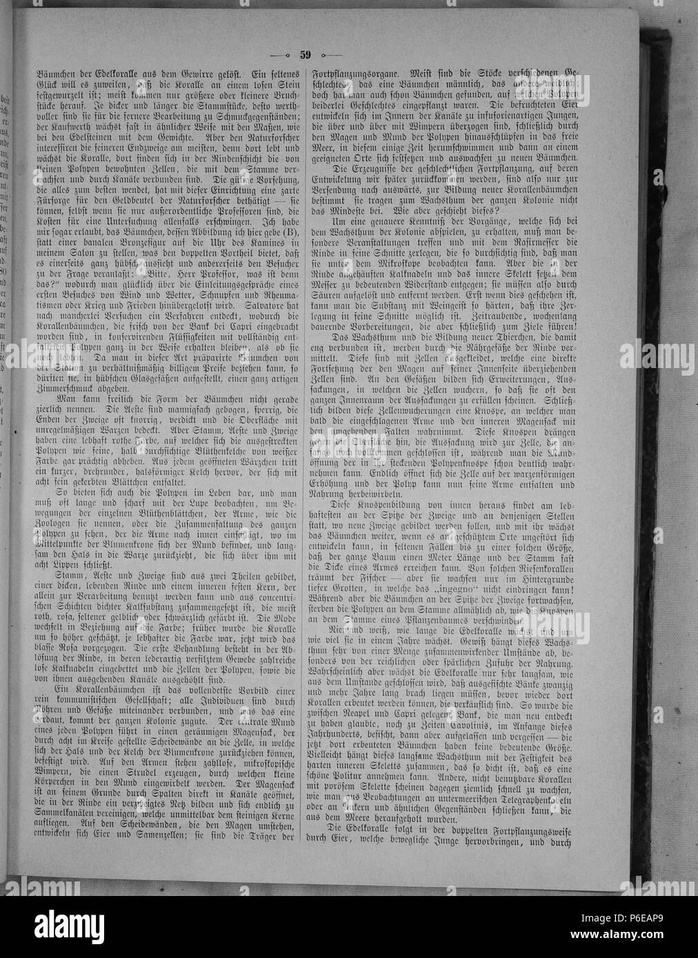 a94a131df83 Die Gartenlaube. Deutsch  Seite 59 aus  Die Gartenlaube . English  .