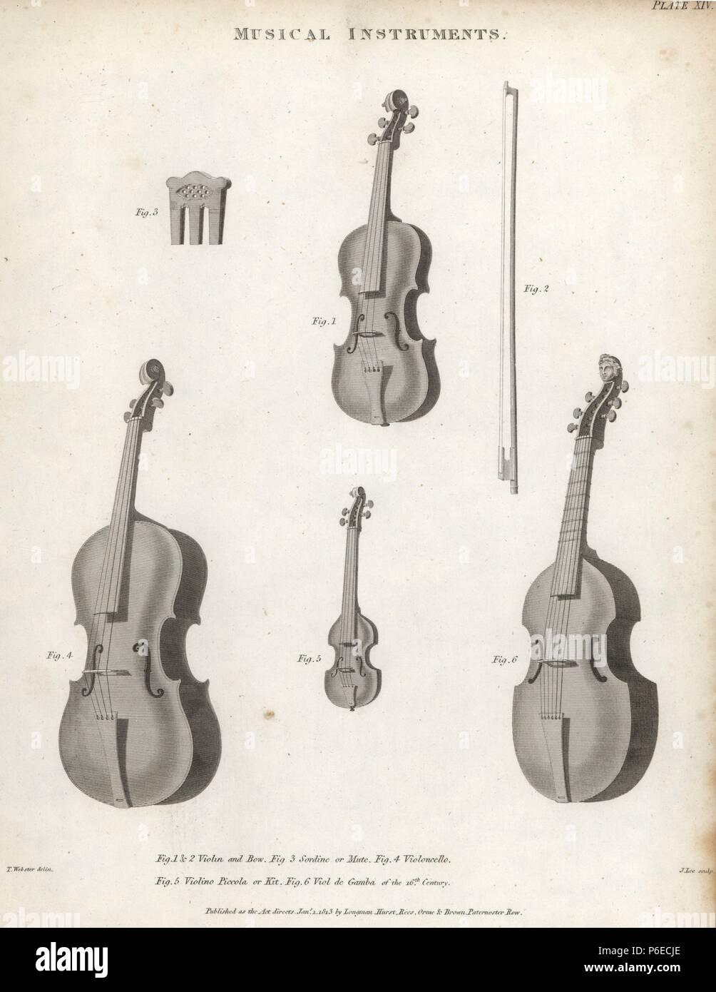 5 Stringed Instrument Stock Photos & 5 Stringed Instrument Stock