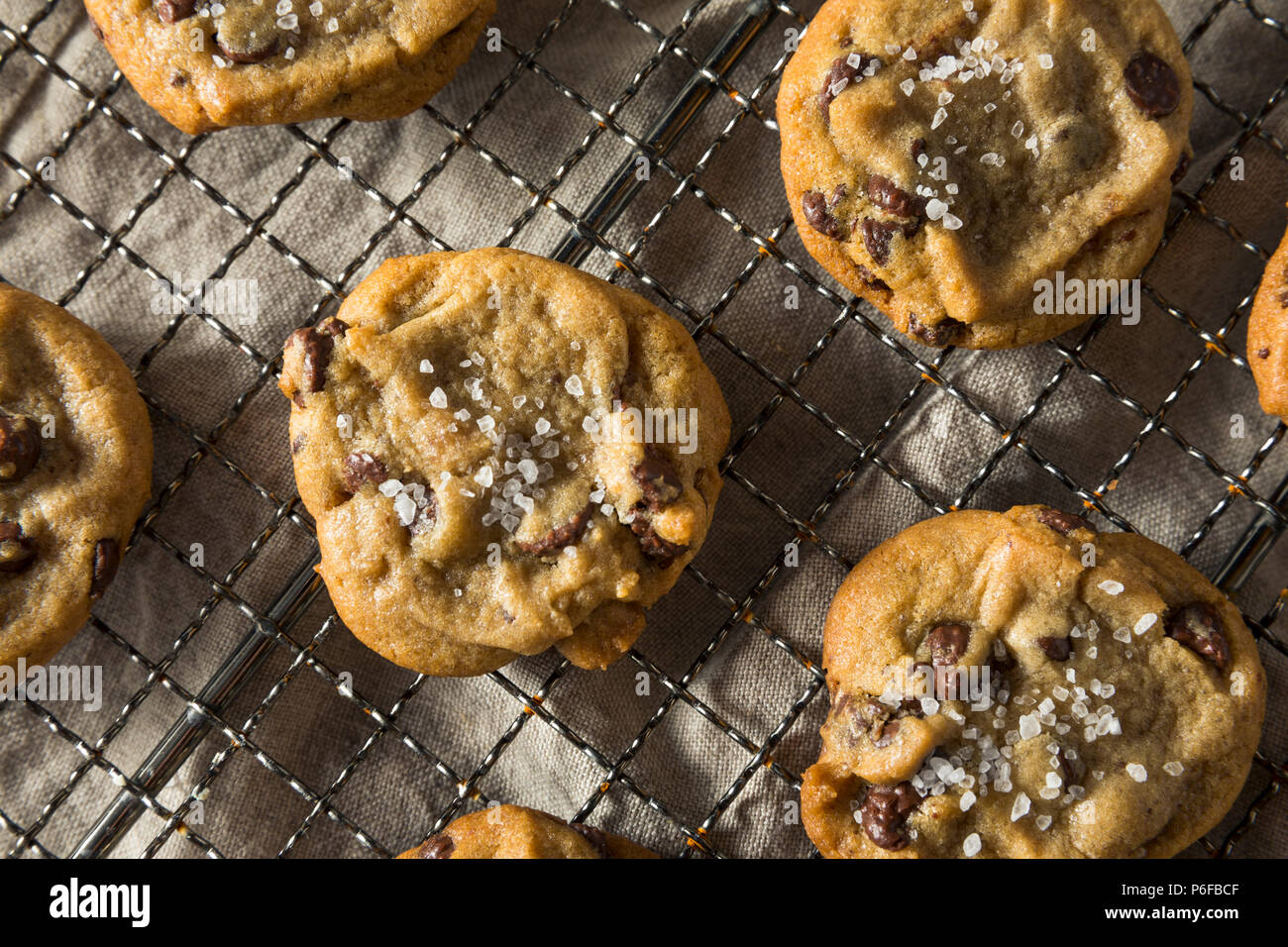Homemade Sea Salt Chocolate Chip Cookies Ready to Eat - Stock Image