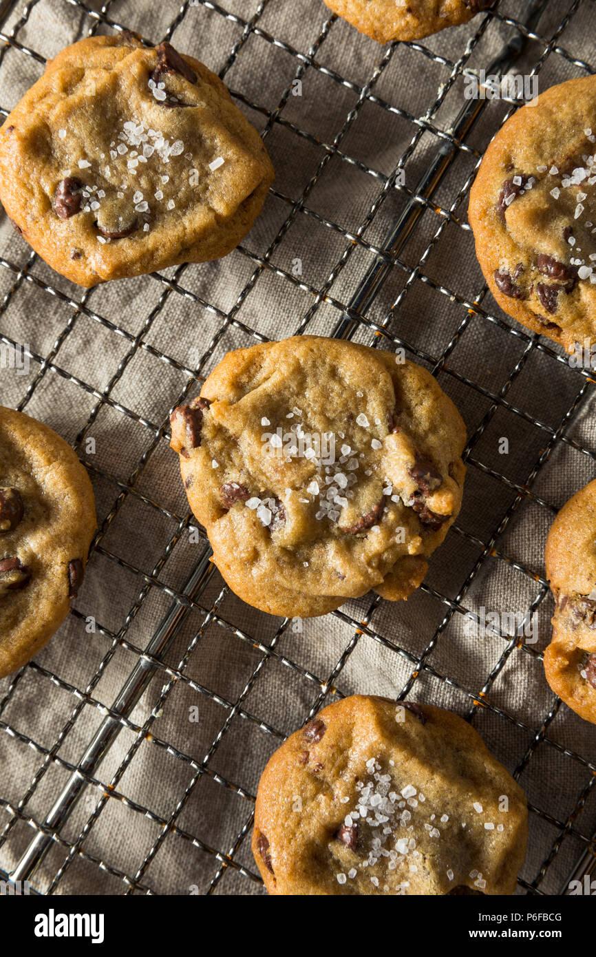 Homemade Sea Salt Chocolate Chip Cookies Ready to Eat - Stock Image