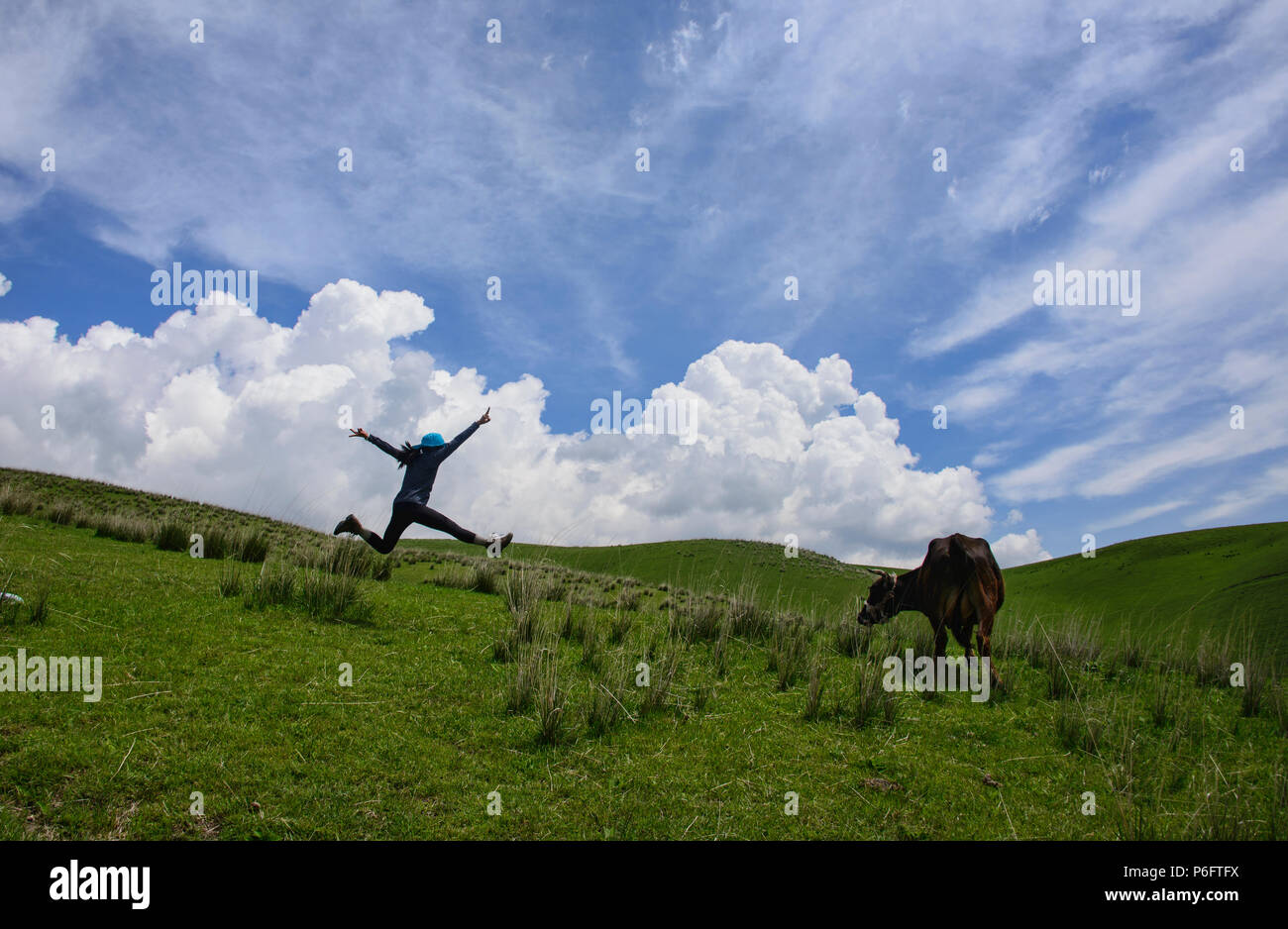 Jumpshot, Nalati, Xinjiang, China - Stock Image