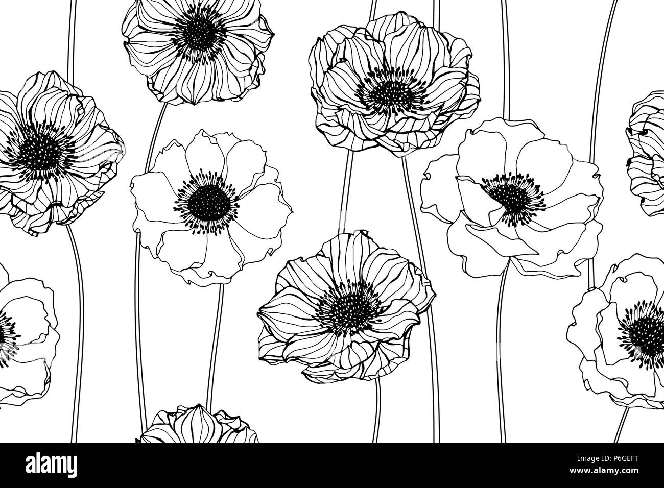 Seamless Anemone Flower Pattern Background Black And White With