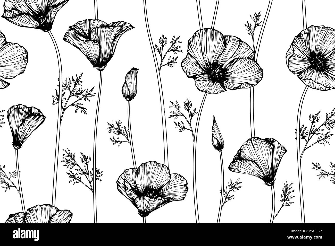 Seamless california poppy flower pattern background black and white seamless california poppy flower pattern background black and white with drawing line art illustration mightylinksfo