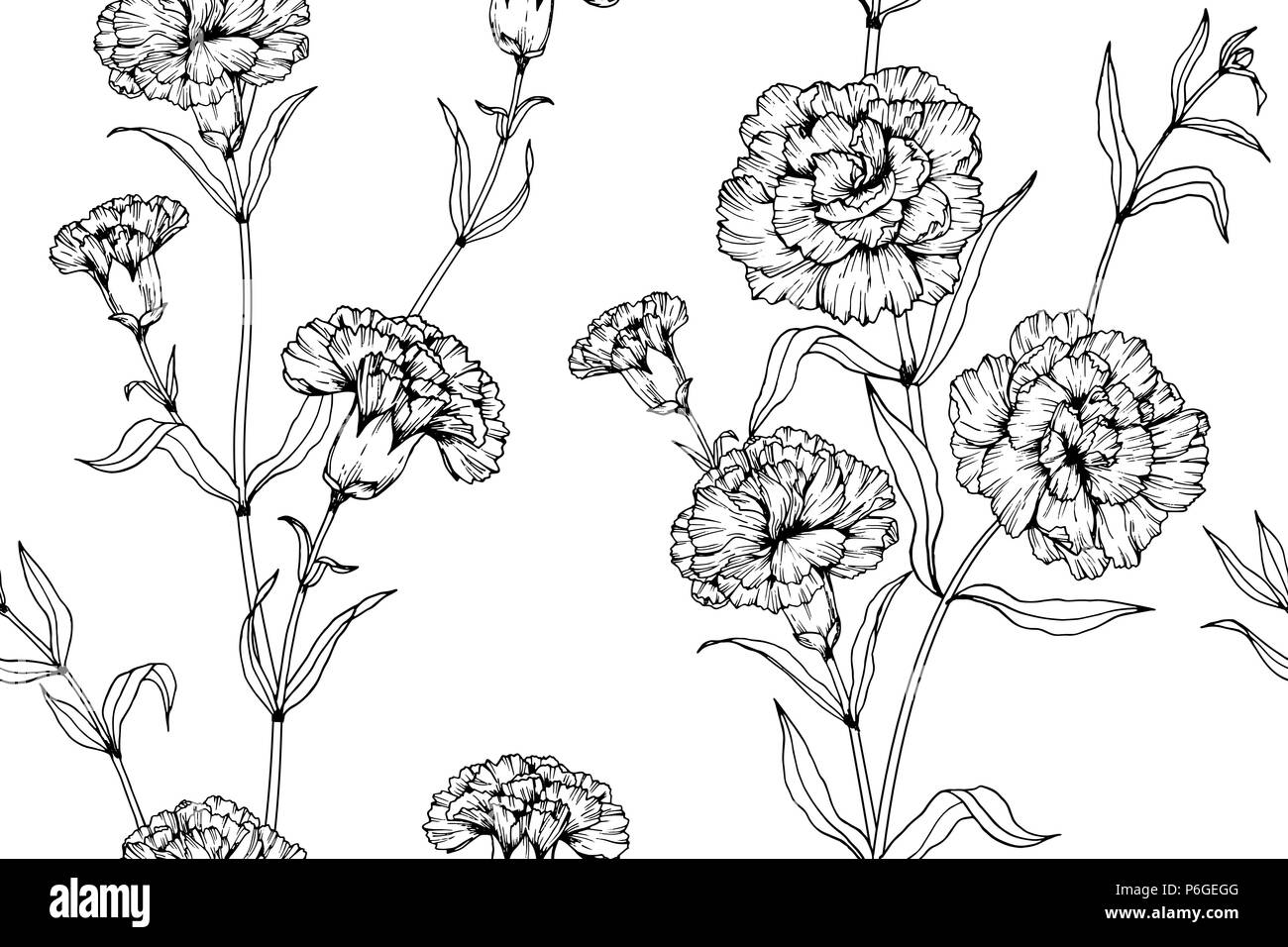 Seamless Carnation Flower Pattern Background Black And White With