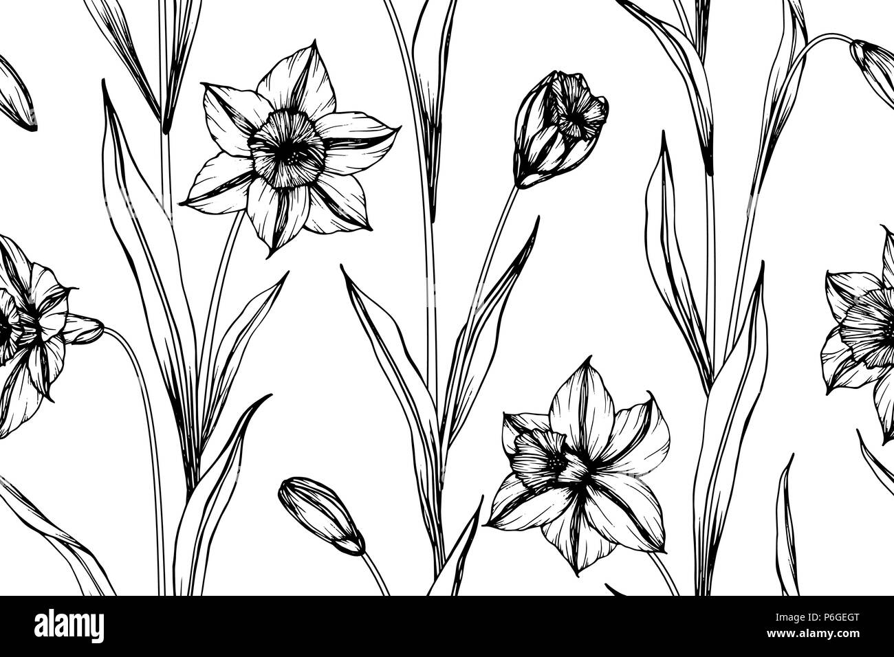 Seamless Narcissus flower pattern background. Black and white with drawing line art illustration. Stock Vector